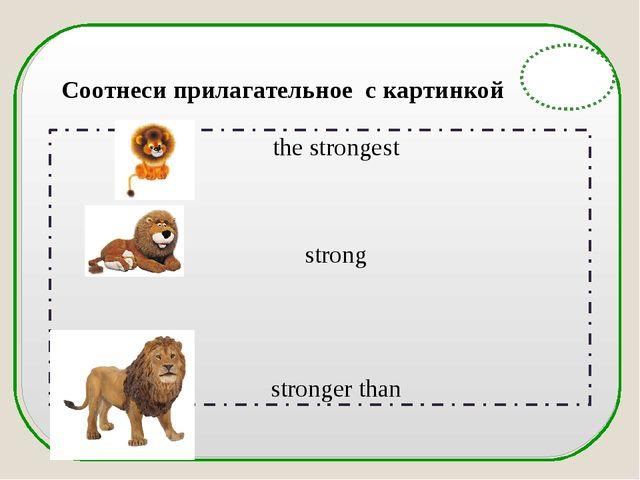 English Grammar the strongest strong stronger than Соотнеси прилагательное с...