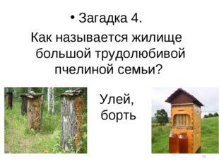 Улей, борть Загадка 4. Как называется жилище большой трудолюбивой пчелиной се
