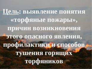 Цель: выявление понятия «торфяные пожары», причин возникновения этого опасног