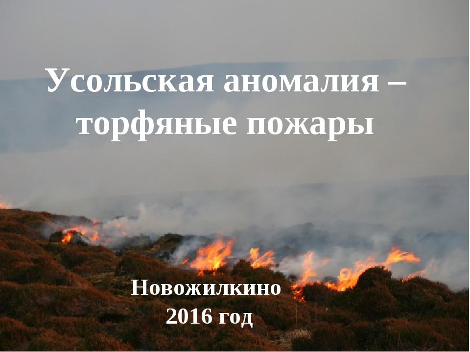 Усольская аномалия – торфяные пожары Новожилкино 2016 год