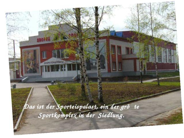 Das ist der Sporteispalast, ein der gröβte Sportkomplex in der Siedlung.