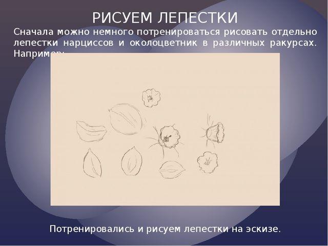 РИСУЕМ ЛЕПЕСТКИ Сначала можно немного потренироваться рисовать отдельно лепес...