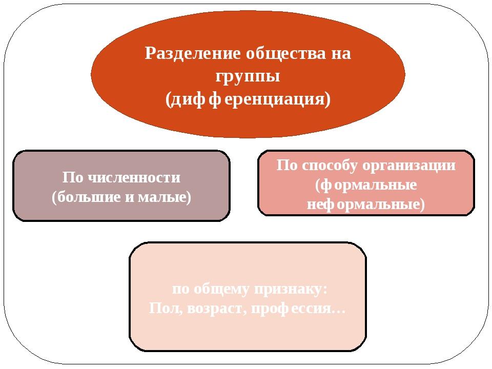 Разделение общества на группы (дифференциация) По численности (большие и малы...