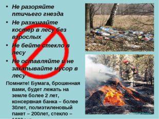 Не разоряйте птичьего гнезда Не разжигайте костер в лесу без взрослых Не бейт