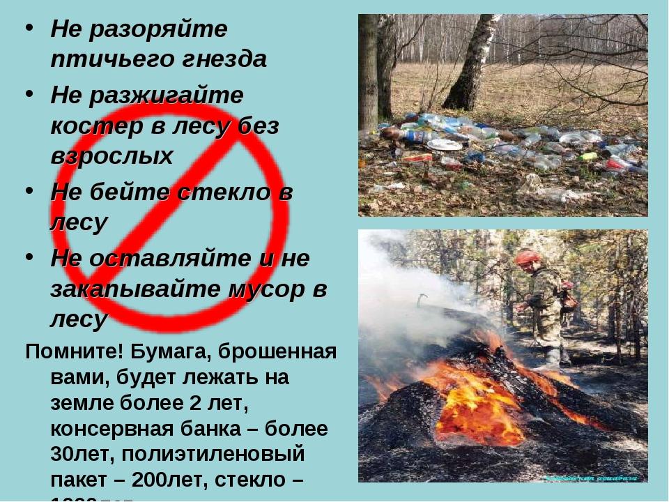 Не разоряйте птичьего гнезда Не разжигайте костер в лесу без взрослых Не бейт...