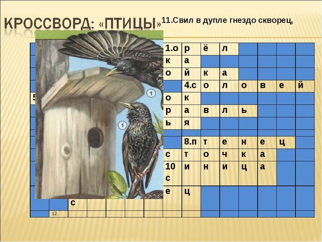11.Свил в дупле гнездо скворец, 1.орёл 2.сорока...