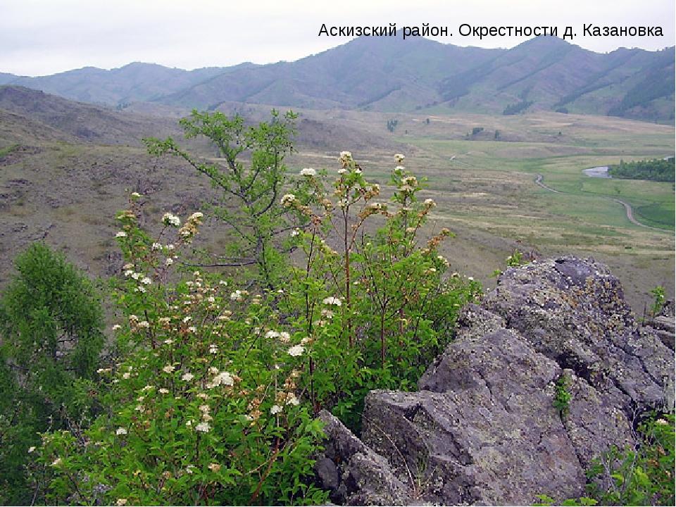 Аскизский район. Окрестности д.Казановка