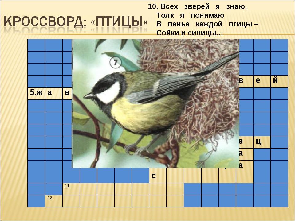 10. Всех зверей я знаю, Толк я понимаю В пенье каждой птицы – Сойки и синицы…...