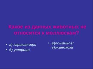 Какое из данных животных не относится к моллюскам? а) каракатица; б) устрица