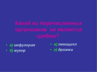 Какой из перечисленных организмов не является грибом? а) инфузория б) мукор в