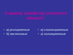 К какому семейству относится яблоня? а) розоцветные б) пасленовые в) сложноцв