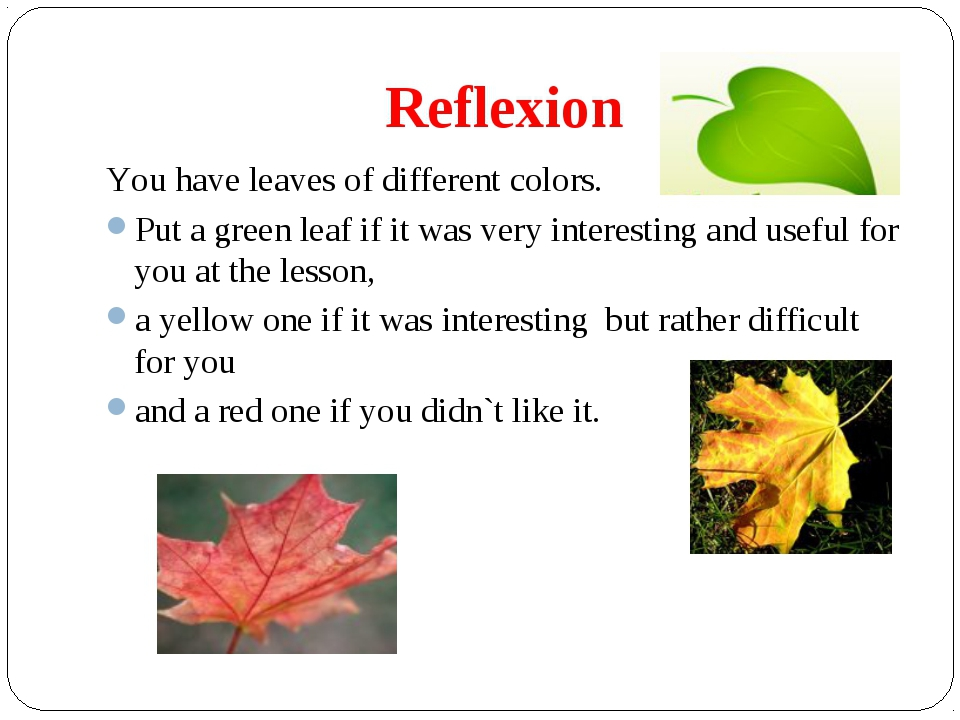 reflection about english 2 A reflection essay x=2  speech english essay about environment protection about football essay smartphones effects, marriage and divorce essay without love.
