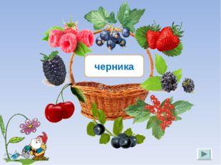 черника Лукяненко Э.А. МКОУ СОШ №256 г.Фокино
