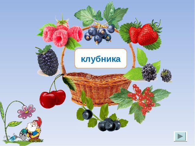 клубника Лукяненко Э.А. МКОУ СОШ №256 г.Фокино