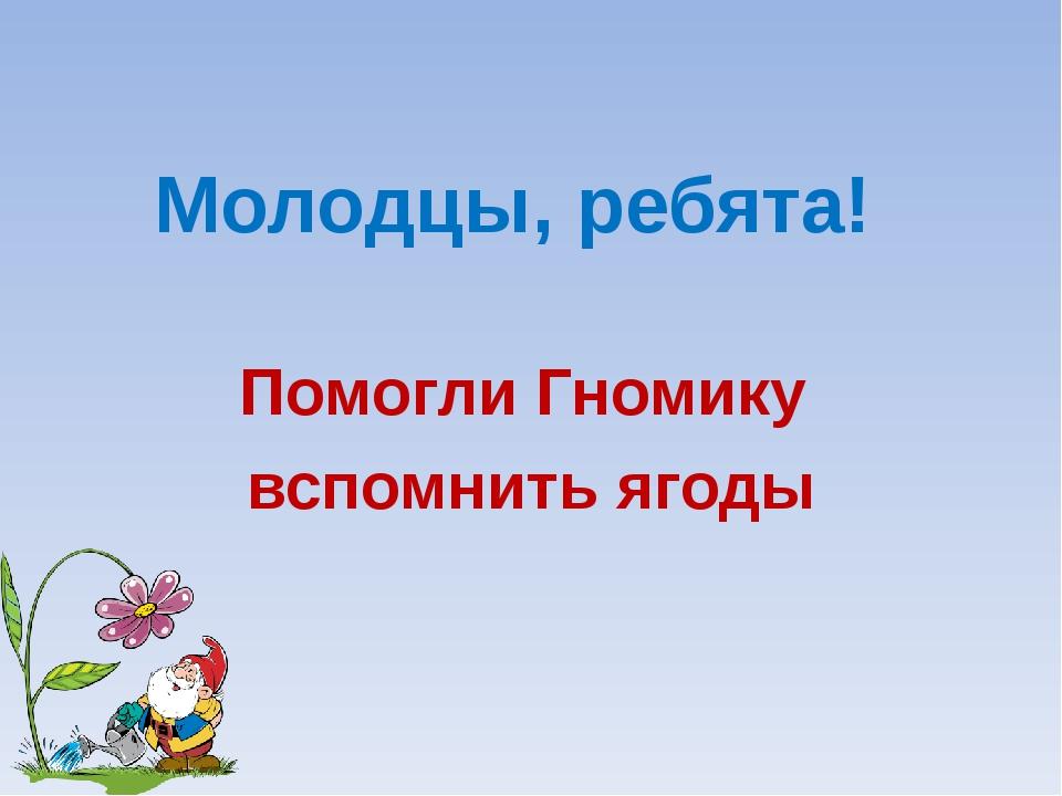 Молодцы, ребята! Помогли Гномику вспомнить ягоды Лукяненко Э.А. МКОУ СОШ №256...