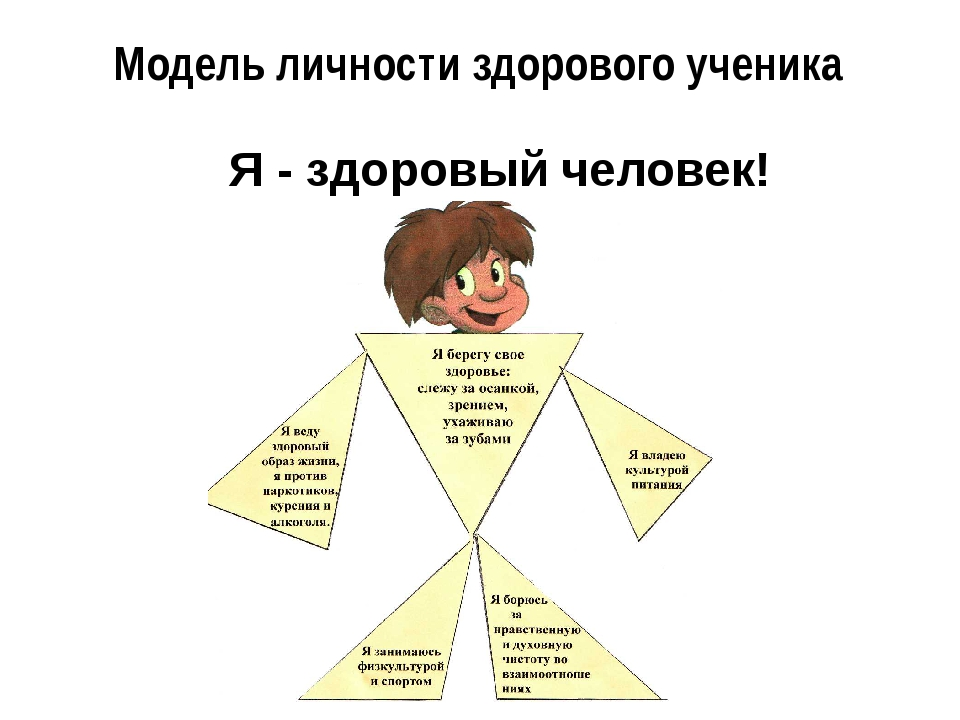 Модель личности здорового ученика Я - здоровый человек!