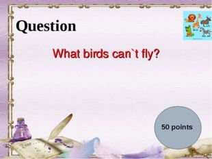 Question What birds can`t fly? 50 points