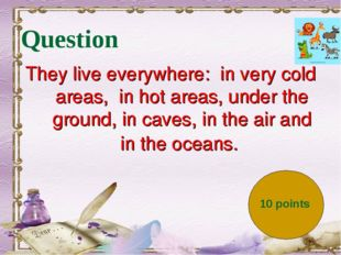 Question They live everywhere:  in very cold areas,  in hot areas, under the