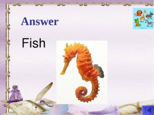 Answer Fish