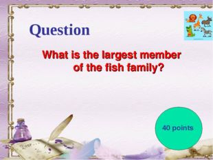 Question What is the largest member of the fish family? 40 points