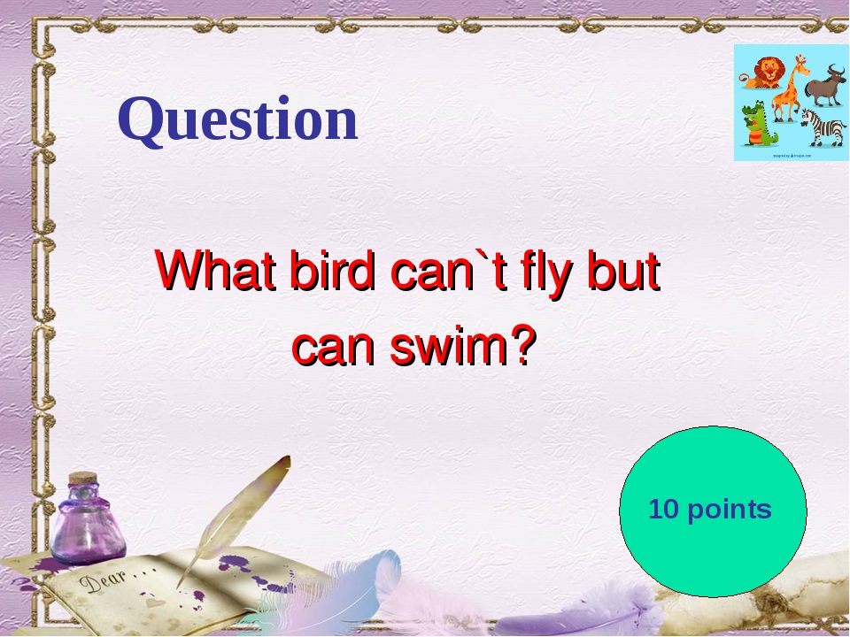 Question What bird can`t fly but can swim? 10 points