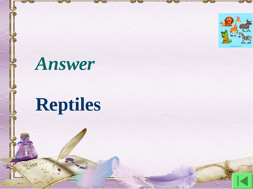 Answer Reptiles
