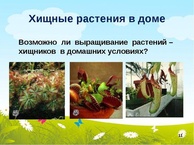 Хищные растения в доме * Возможно ли выращивание растений – хищников в домашн...