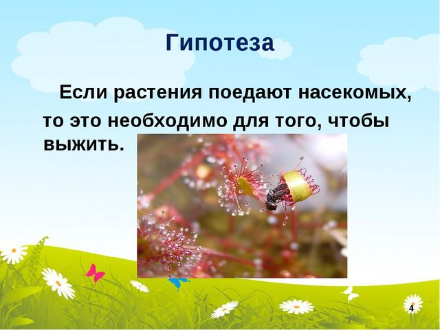 Гипотеза Если растения поедают насекомых, то это необходимо для того, чтобы в...