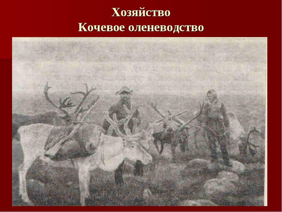 Хозяйство Кочевое оленеводство