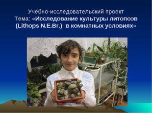 Учебно-исследовательский проект Тема: «Исследование культуры литопсов (Litho