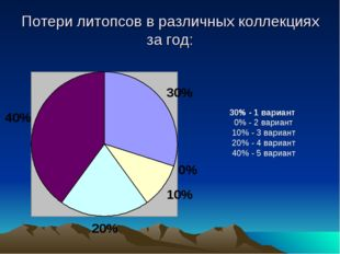 Потери литопсов в различных коллекциях за год: 30% - 1 вариант 0% - 2 вариант