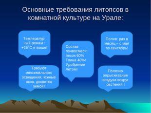 Основные требования литопсов в комнатной культуре на Урале: Полив: раз в меся
