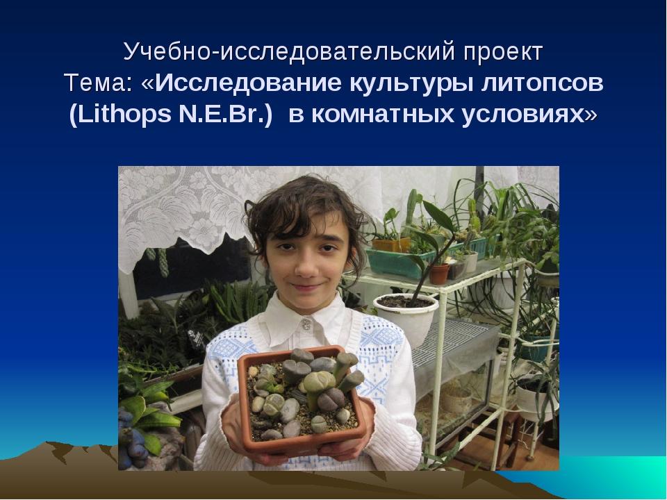 Учебно-исследовательский проект Тема: «Исследование культуры литопсов (Litho...