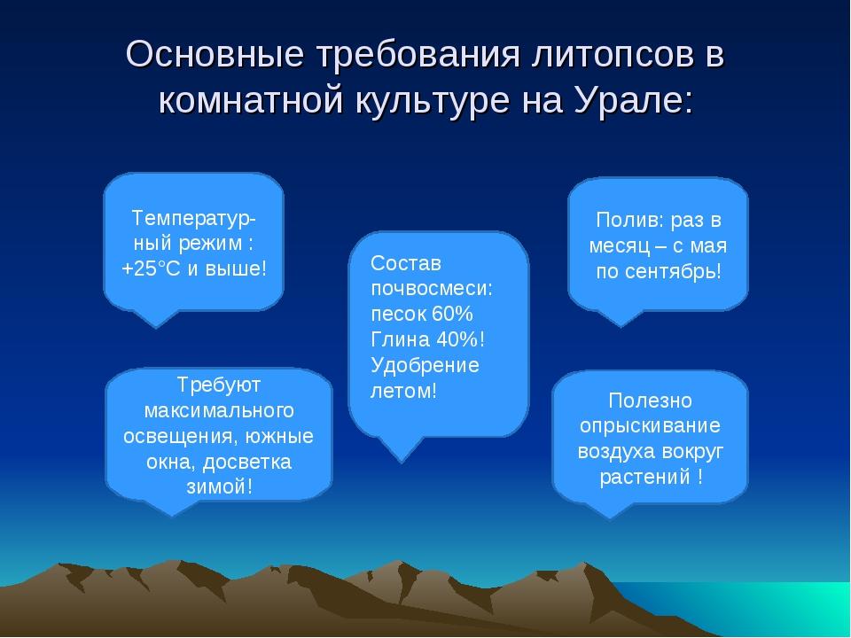 Основные требования литопсов в комнатной культуре на Урале: Полив: раз в меся...