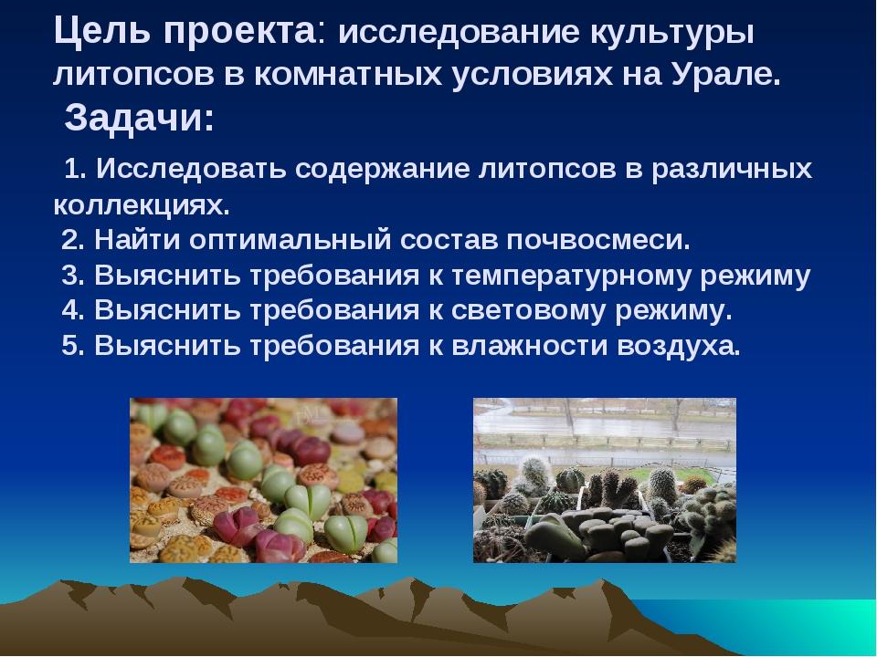Цель проекта: исследование культуры литопсов в комнатных условиях на Урале. З...