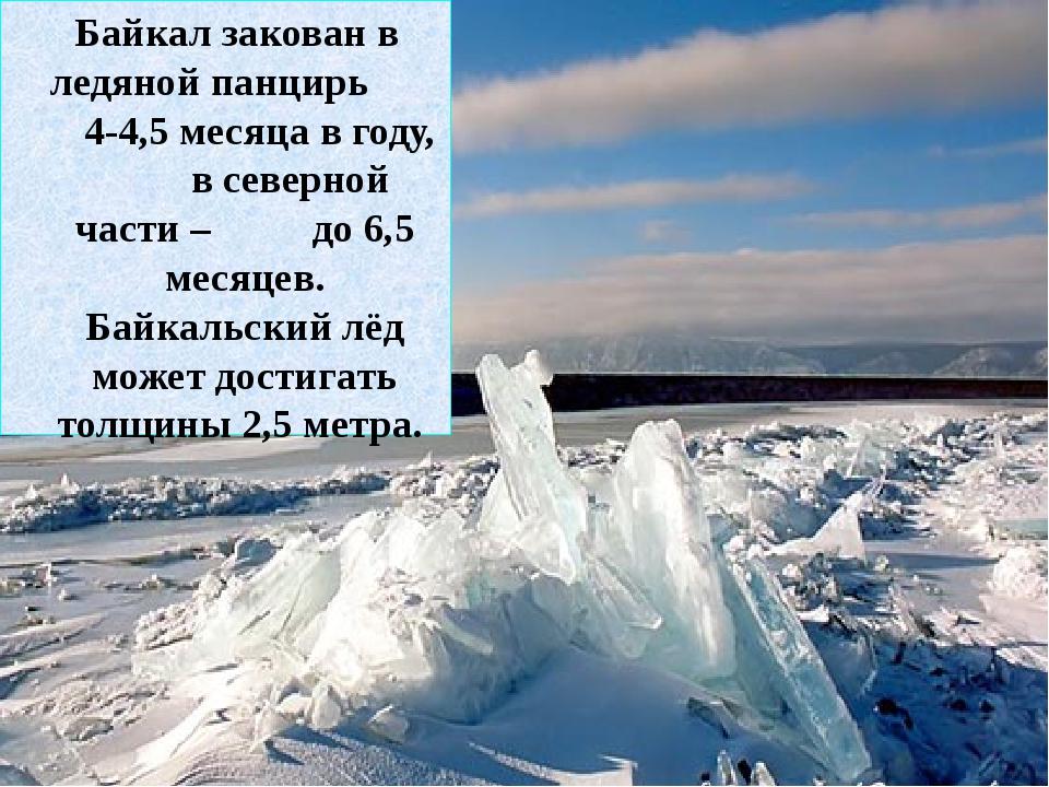 Байкал закован в ледяной панцирь 4-4,5 месяца в году, в северной части – до...