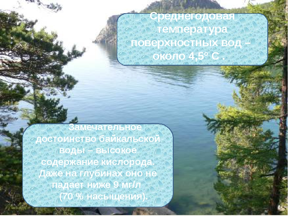 Замечательное достоинство байкальской воды – высокое содержание кислорода. Да...