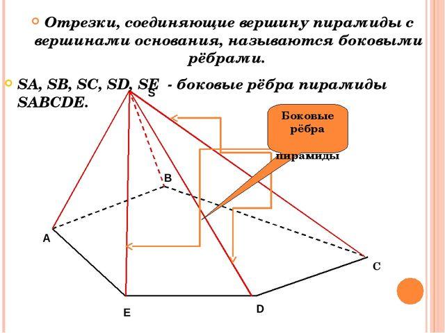 C Отрезки, соединяющие вершину пирамиды с вершинами основания, называются бок...