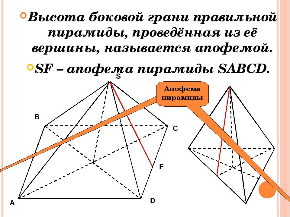 Высота боковой грани правильной пирамиды, проведённая из её вершины, называет...