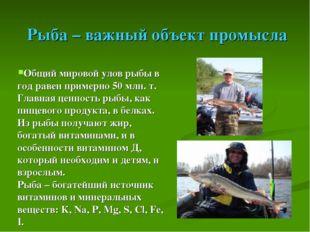 Рыба – важный объект промысла Общий мировой улов рыбы в год равен примерно 5