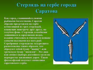 Стерлядь на гербе города Саратова Как город, славившийся своими рыбными богат