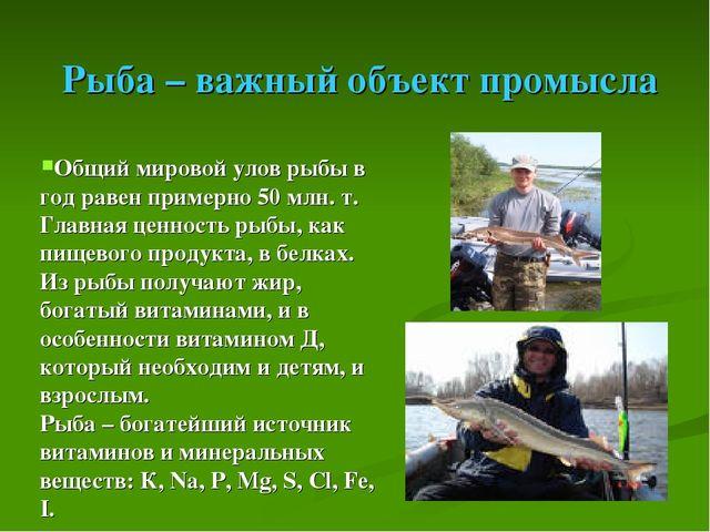 Рыба – важный объект промысла Общий мировой улов рыбы в год равен примерно 5...
