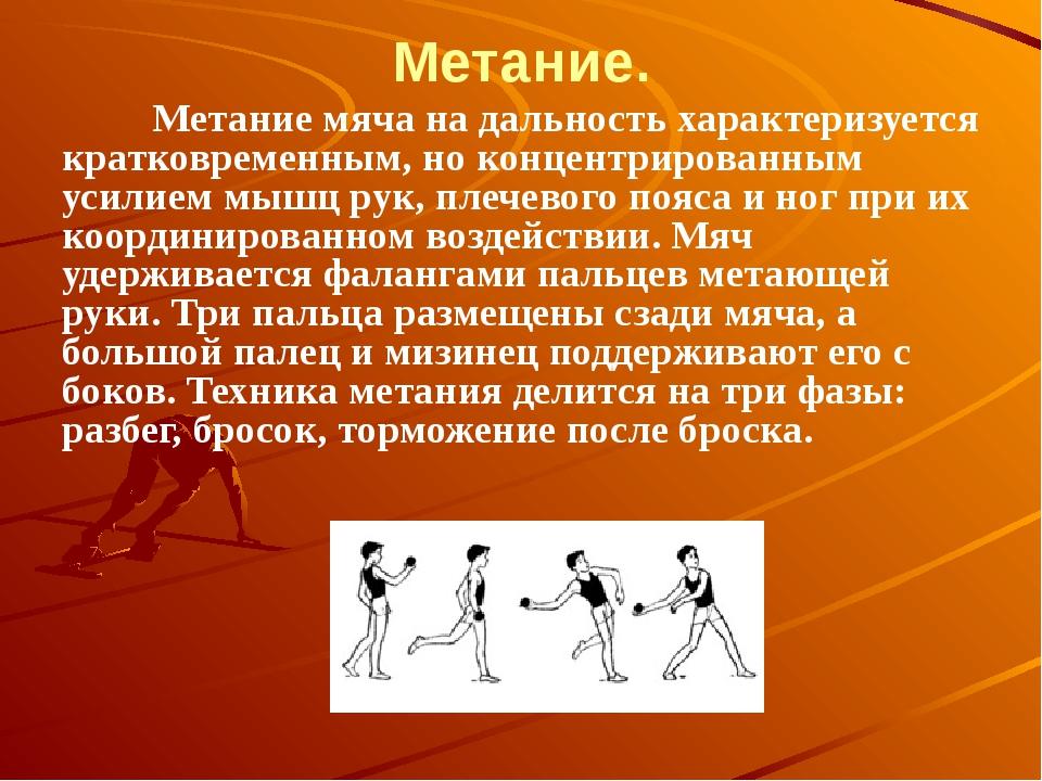 Метание.  Метание мяча на дальность характеризуется кратковременным, н...