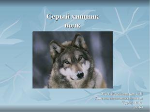 Серый хищник волк МОУ Васильевская СШ Учитель начальных классов Турова Н.Н.
