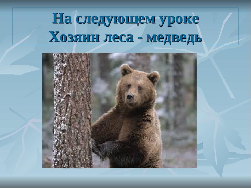 На следующем уроке Хозяин леса - медведь