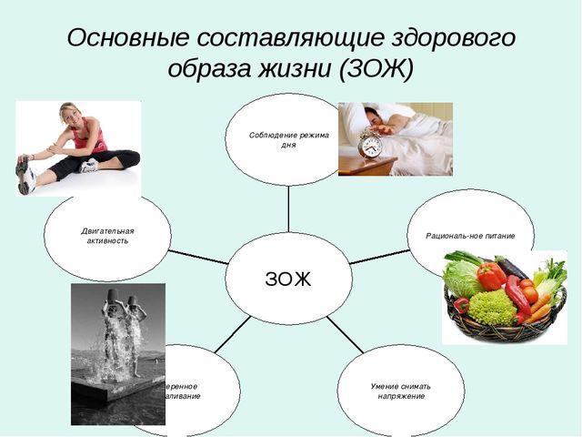 Основные составляющие здорового образа жизни (ЗОЖ) Двигательная активность Ум...