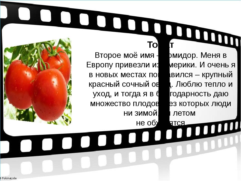 Томат Второе моё имя – помидор. Меня в Европу привезли из Америки. И очень я...