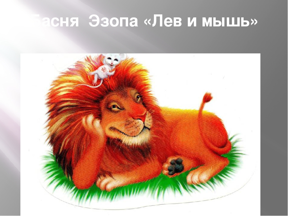 Басня Эзопа «Лев и мышь»