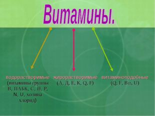водорастворимые (витамины группы В, ПАБК, С, Н, Р, N, U, холина хлорид) жир