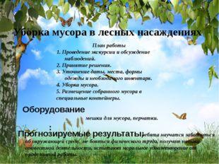 Уборка мусора в лесных насаждениях План работы 1. Проведение экскурсии и обс